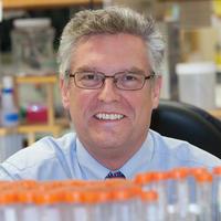 Michael Blaber, a professor in Florida State's College of Medicine.
