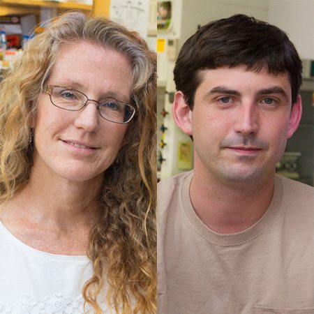 Biological science Professor Debra Fadool and post-doctoral researcher Nicolas Thiebaud.