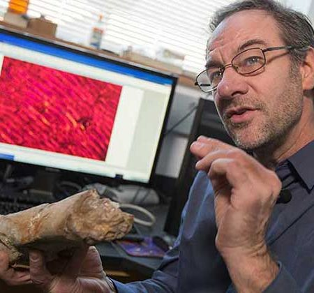 Professor of Biological Science Gregory Erickson
