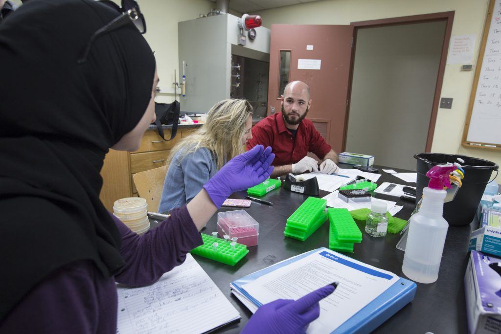 While similar courses throughout the nation have used CRISPR to edit the genes of easily manipulatable organisms like fruit flies, Dennis' course is singular in its use of human cancer cells.