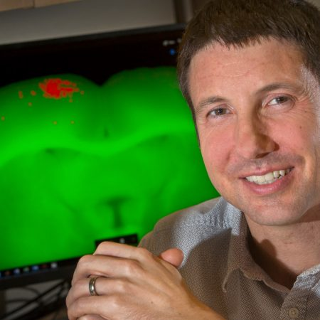 Assistant Professor Aaron Wilber has discovered new insights into how the brain is organized to help a person navigate.