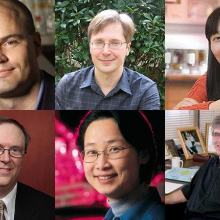 "Thomas Joiner, Igor Alabugin, Qing-Xiang ""Amy"" Sang, Todd Adams, Hong Li and Efstratios Manousakis are FSU's newest AAAS fellows."
