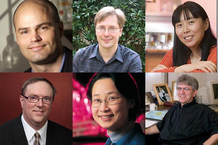 """Thomas Joiner, Igor Alabugin, Qing-Xiang """"Amy"""" Sang, Todd Adams, Hong Li and Efstratios Manousakis are FSU's newest AAAS fellows."""