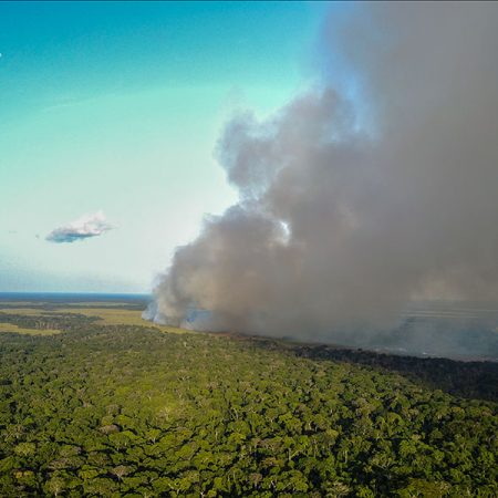 Researchers found that nitrogen from large-scale fires is being swept up into the atmosphere and deposited on the forests of the Congo Basin.