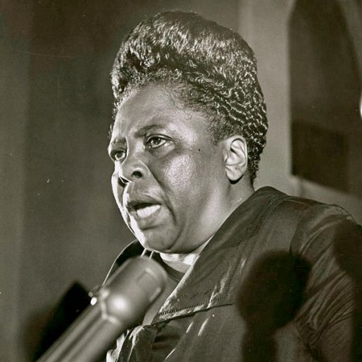 Fannie Lou Hamer worked for equal rights and became an icon of the civil rights movement.
