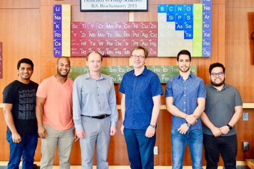Professor of Chemistry Igor Alabugin and his team devised a new strategy for synthesizing olympicene molecules.