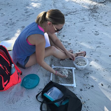 EOAS student researcher Victoria Beckwith surveyed 10 important loggerhead turtle nesting beaches along the Gulf coast. Microplastics were present at each site.