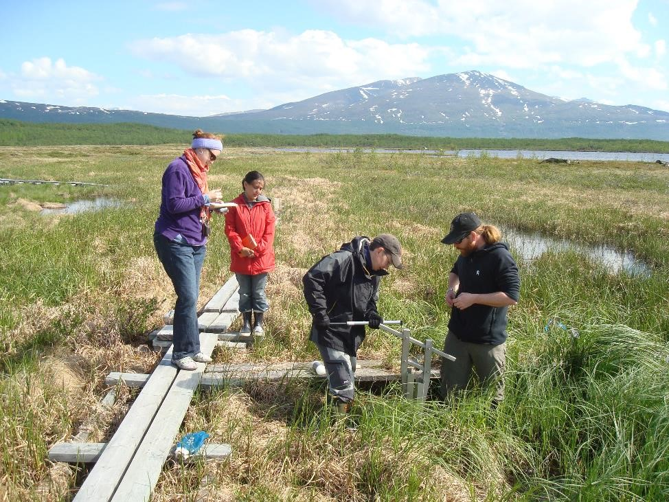Researchers bored deep into the Earth to measure peat composition at various depths.