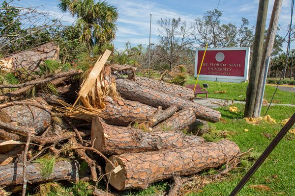 The FSU Panama City suffered significant damage, but swift action by the administration will allow the campus to reopen Oct. 29. (Bill Lax/FSU Photography Services)