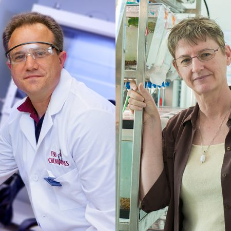 Professor of Chemistry Thomas Albrecht-Schmitt and Professor of Biological Science Kimberly Hughes