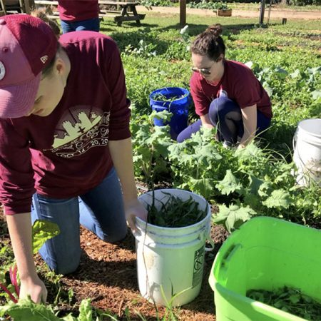 Notable nonprofits iGrow Urban Farm and Frenchtown community garden set up service sites to foster local youth development and provide fresh produce for an area considered to be a food desert.