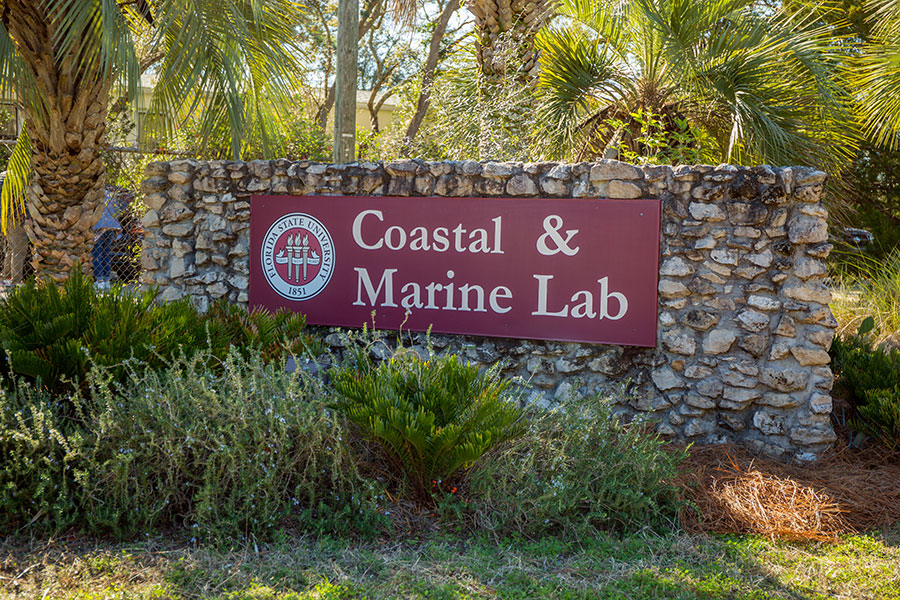 The mission of the Marine Lab is to conduct innovative, pioneering, interdisciplinary research on coastal and marine ecosystems.