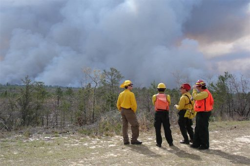 Researchers watch a prescribed fire that was conducted as part of a 2008 experiment at Eglin Air Force Base in northwest Florida. This latest project will continue research on prescribed fire to improve the understanding of smoke plume dynamics. Photo courtesy of Kevin Hiers / Tall Timbers Research Station & Land Conservancy.