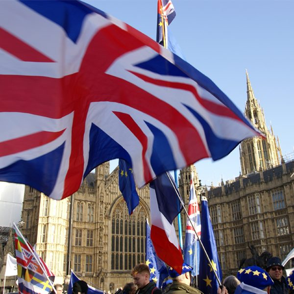 A Brexit protest in 2018 outside the Palace of Westminster in London. (Courtesy of Wikimedia Commons)