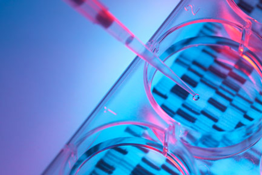 Florida State University researchers are contributing to the the Encyclopedia of DNA Elements, a project to better understand how the human genome works. Courtesy of the National Institutes of Health.