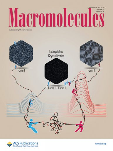 The research by Rufina Alamo and former doctoral student Xiaoshi Zhang was featured on the front cover of Macromolecules. Alamo and Zhang designed the illustration, and Zhang drew it. (Courtesy of Xiaoshi Zhang)