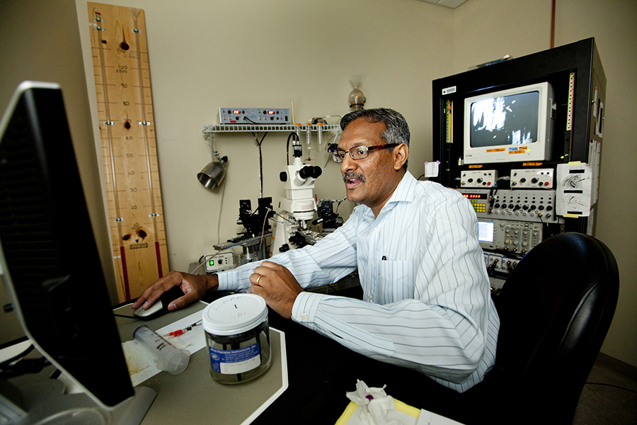 Sanjay Kumar, an associate professor in the Florida State University College of Medicine's Department of Biomedical Sciences (Colin Hackley)