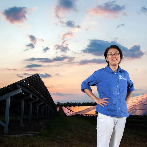 Hui Li, a professor in the Department of Electrical and Computer Engineering at the FAMU-FSU College of Engineering, stands in the city's solar farm west of the Tallahassee International Airport. (Mark Wallheiser/FAMU-FSU College of Engineering)