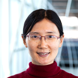 Yuan Li, assistant professor in the Department of Electrical and Computer Engineering