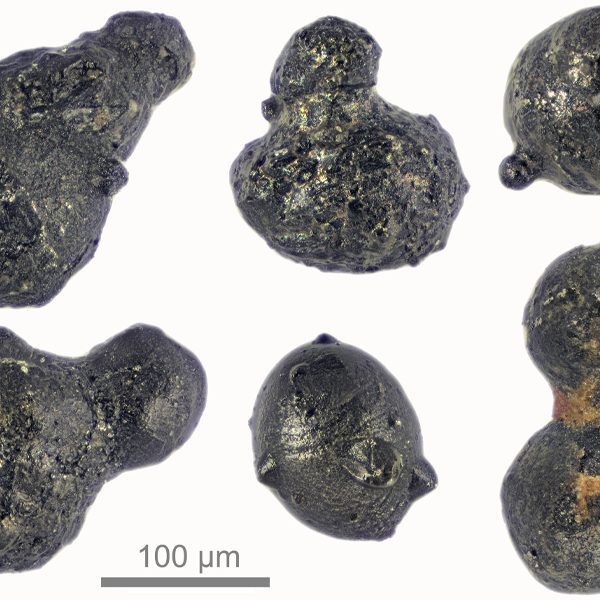 Particles from an exploding meteor that reached the Antarctic ice sheet 430,000 years ago. The particles are evidence of an airburst — a large meteorite or comet collision with the atmosphere that leaves no crater behind — that created a jet of melted and vaporized meteoritic material that passed through the atmosphere to reach the Earth's surface. (Courtesy of Scott Peterson / micrometeorites.com)