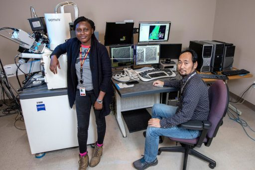Abiola Temidayo Oloye, left, a fifth-year doctoral candidate and the lead author of a study published in Superconductor Science and Technology, at an electron microscope with Fumitake Kametani, an associate professor of mechanical engineering and principal investigator for the study at the FAMU-FSU College of Engineering. (Mark Wallheiser/FAMU-FSU College of Engineering)