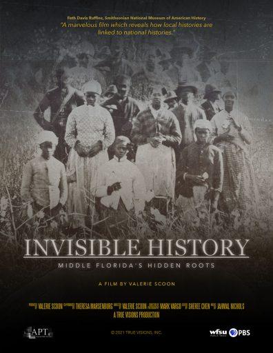 Invisible History film poste